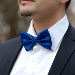 Papion albastru cu striatii